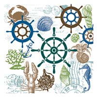 Natural Sea Life Fine Art Print