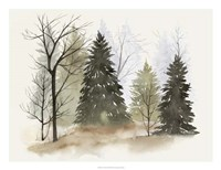 In the Mist II Fine Art Print