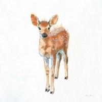 Into the Woods III on White no Border Fine Art Print