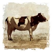 Rustic Cow Fine Art Print
