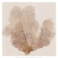 Luxe Coral I Fine Art Print