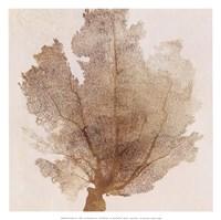 Luxe Coral II Fine Art Print