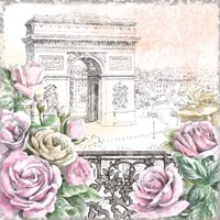 Paris Roses V Framed Print