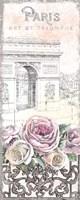Paris Roses Panel VII Fine Art Print
