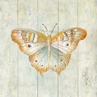Natural Flora VII Framed Print