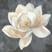 Majestic Magnolia Neutral Sq Fine Art Print