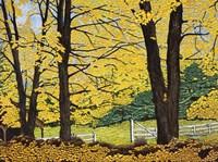 Golden Day, New Hampshire Fine Art Print