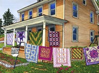 Quilts Nine On The Line, Lancaster, Pa Fine Art Print