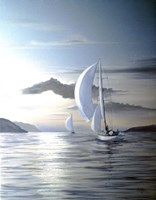 White Sails Fine Art Print