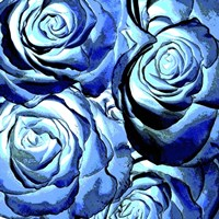 Blue Roses Square Fine Art Print
