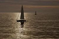 Sailboats Copper Fine Art Print