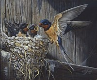 Country Living  - Barn Swallows Fine Art Print