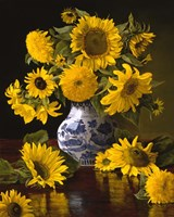 Sunflowers in Blue & White Chinese Vase Fine Art Print
