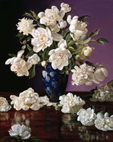 White Peonies in Blue Chinese Vase Fine Art Print