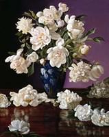 White Peonies in Blue Chinese Vase Fine Art Print