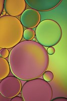 Green and Orange Drops Fine Art Print