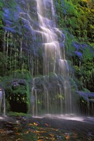 Majestic Waterfall Fine Art Print