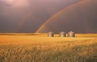 Rainbows Over the Plains Fine Art Print