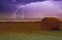 Lightning Over Hay Fields Fine Art Print