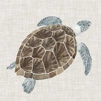 Sea Turtle I Fine Art Print