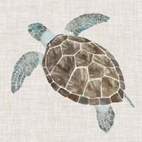 Sea Turtle II Fine Art Print
