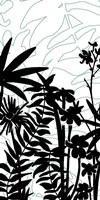 Rainforest Ferns I Fine Art Print