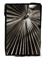 Palm Frond I Framed Print