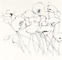 Black Line Poppies I Fine Art Print
