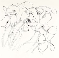 Black Line Poppies II Fine Art Print