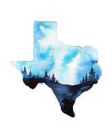 Texas State Watercolor Fine Art Print