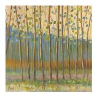 Through Pastel Trees Fine Art Print