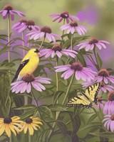 Butterfly & Finch Amongst Flowers Fine Art Print