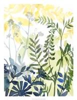 Layered Blooms II Framed Print
