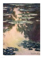 Waterlilies with Weeping Willows, 1907 Fine Art Print