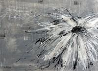 Fleur Blanche sur Fond Gris Fine Art Print