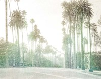 Driving in Beverly Hills Fine Art Print