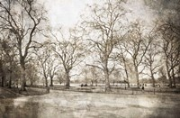Hyde Park I Framed Print