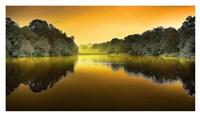 The Lake Fine Art Print