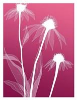 Floral Silhouette 5 Fine Art Print