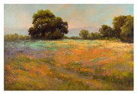 Spring Meadow Fine Art Print