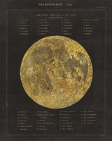 Astronomical Chart I Fine Art Print