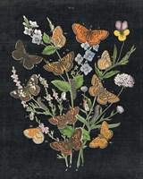 Butterfly Bouquet on Black I Fine Art Print