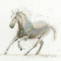 Stallion II Framed Print