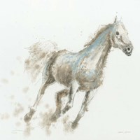 Stallion I Framed Print