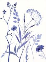 Meadow V Fine Art Print