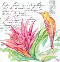 Tropical Garden III Fine Art Print