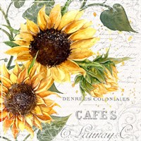 Summertime Sunflowers II Fine Art Print