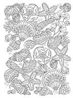 Nautical Shells Fine Art Print
