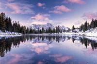 Alpine Pink Fine Art Print