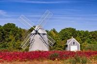 Higgins Farm Windmill Fine Art Print